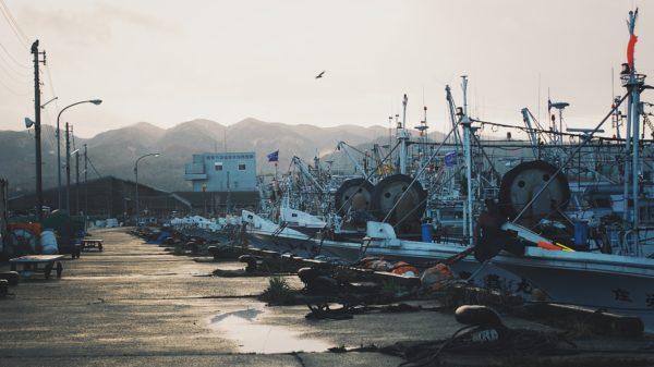 日東マリンランプ 海洋灯歳時記2019雨水